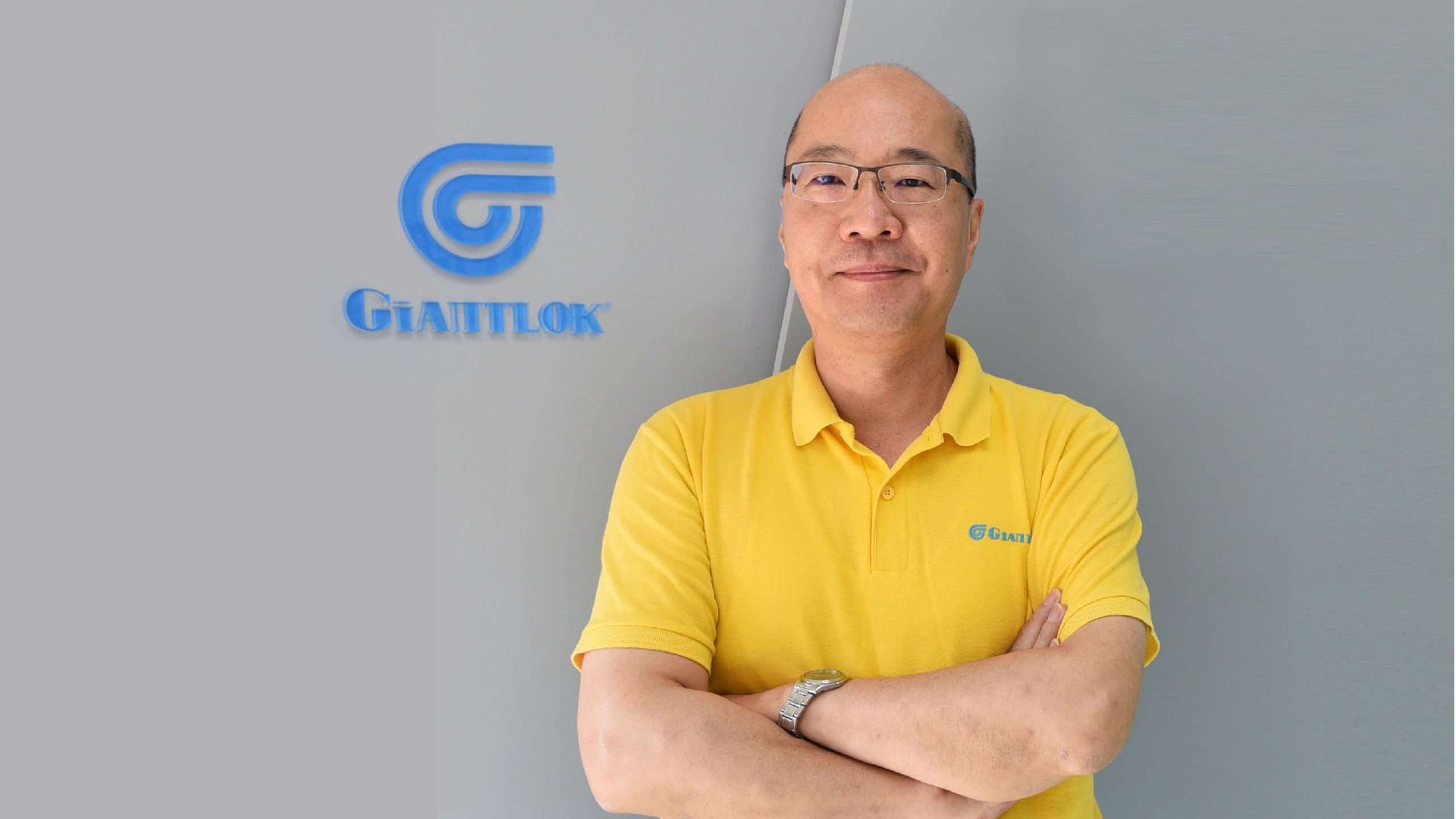 Giantlok consulting service